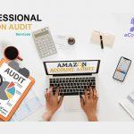 Amazon Account Audit